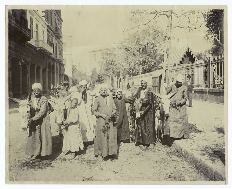 donkey boys cairo Rare Old Photos of Egypt