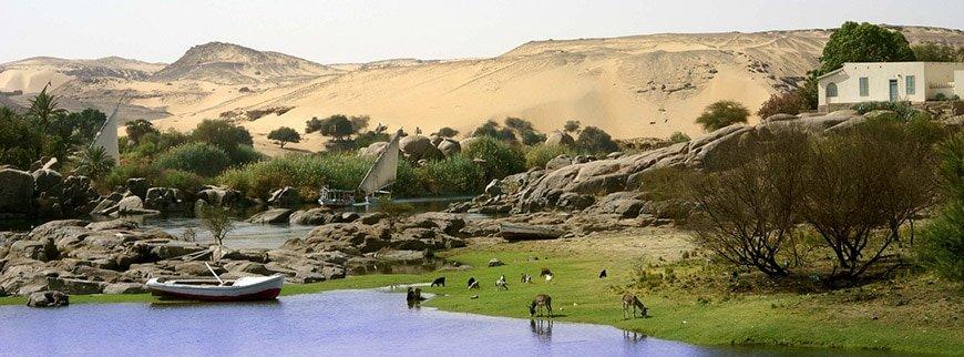 awan excursion egypt