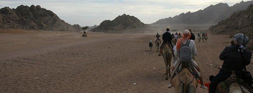 camel ride excursion egypt