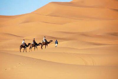 camel riding tour sharm 400x267 Sharm El Sheikh Shore Excursions
