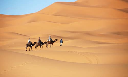 camel-riding-tour-sharm.jpg