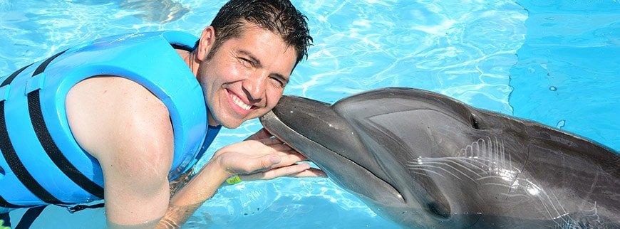 dolphin excursione egypt