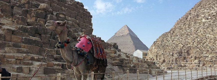 egypt cairo pyramids tour