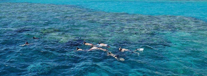 egypt snorkeling tour