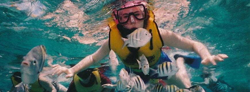reef snorkeling excursion egypt