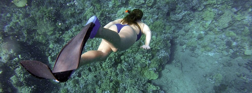 snorkeling excursions egypt