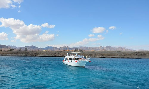 snorkeling tiran island tour from sharm el sheikh