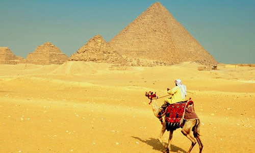 tour to cairo from soma bay by bus