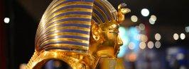tutankhamen museum cairo tour